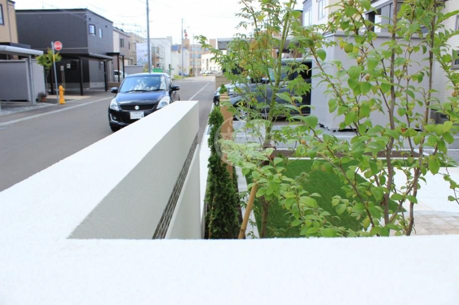 札幌市 塗壁 樹木