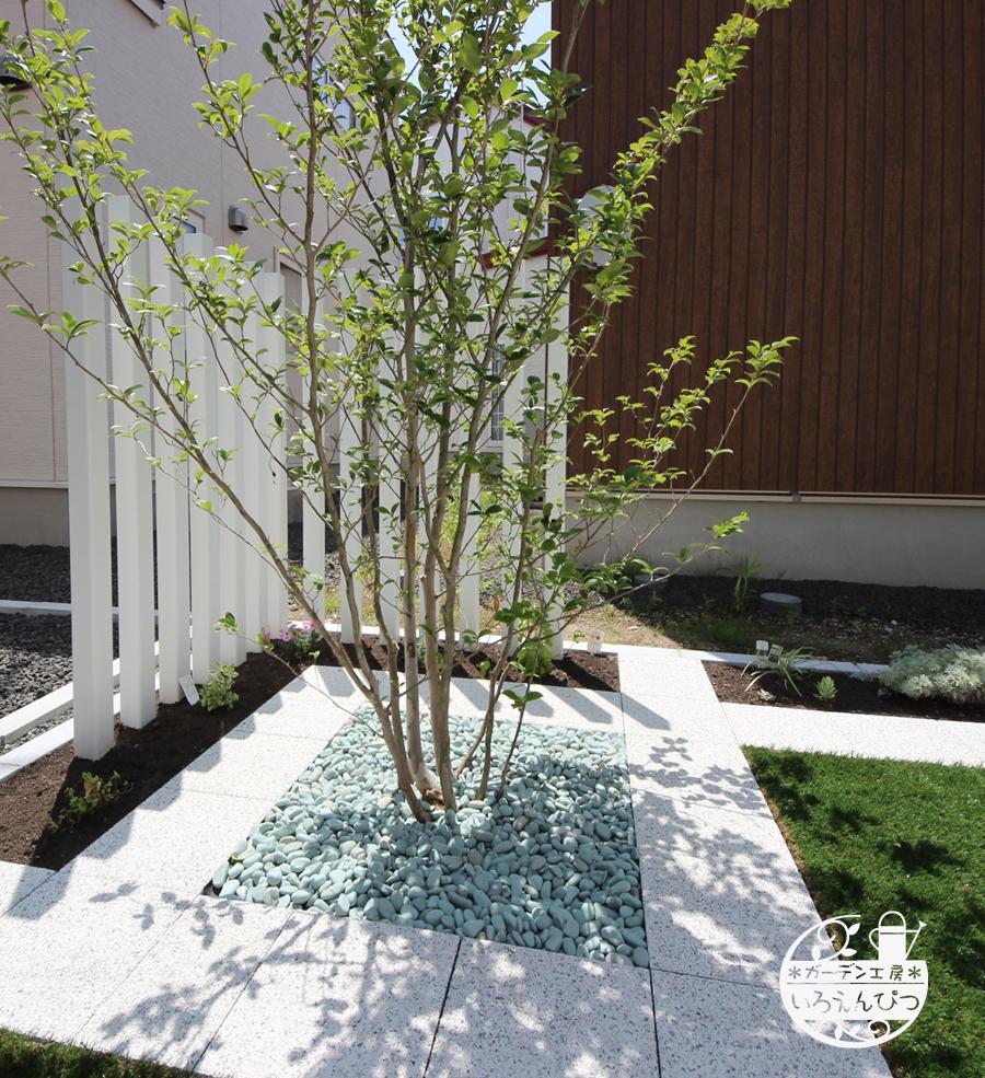 札幌 緑花石